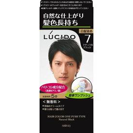 マンダム LUCIDO ワンプッシュケアカラー ナチュラルブラック 1剤50g・2剤50g 男性染毛剤・白髪用