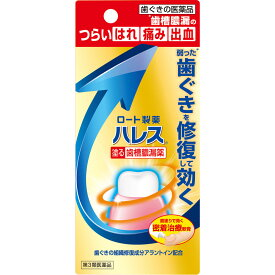 【送料無料】【あす楽】【第3類医薬品】ハレス 口内薬 15G(2個セット)