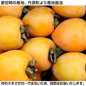 干し柿用 愛宕柿 10kg[多少キズあり]【smtb-KD】