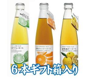 道後エール オレンジ・柚子・岩城ライムエール【6本飲み比べセット】【箱入り】【プレゼント】