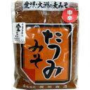 たつみ 麦みそ 粒 (中辛)(中辛口)1Kg