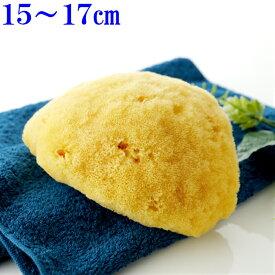 ボディ洗い【敏感肌にやさしい】究極の柔らかさ天然海綿スポンジ最高級シルク種L乾燥時15〜17センチ(お水で膨らみます)ライトイエロー色送料無料