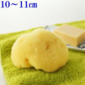 洗顔 ボディ洗い【敏感肌にやさしい】究極の柔らかさ天然海綿スポンジ最高級シルク種S乾燥時10〜11cm1個入(お水で膨らみます)ライトイエロー色送料無料