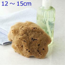 洗顔 ボディ洗い【敏感肌にやさしい】無脱色 天然海綿スポンジ最高級シルク種M乾燥時12〜15cm(お水で膨らみます)ナチュラル色送料無料