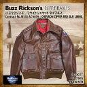 バズリクソンズ タイプA-2 シェブロンジッパー レッドシルクライニング ステンシルタイプ Buzz Rickson's レザーフライトジャケット [BR80475] 革ジャン レザージャケット a-