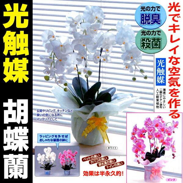 光触媒 胡蝶蘭 観葉植物 フラワー 花 造花 光の力で脱臭・殺菌!