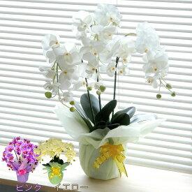 光触媒 胡蝶蘭 造花 フラワーアレンジメント 観葉植物 供花 EICO ピンク イエロー ホワイト