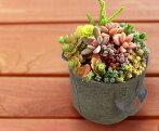 フェルトプランター丸形ガーデニングエコ植木鉢直径18cm