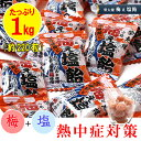 【送料無料】 榮太樓 塩飴 梅ぇ塩飴 たっぷり1kg(約220粒)パック 業務用 熱中症対策 あめ アメ キャンディー キャンデー