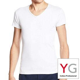 GUNZE・YG(ワイジー)下着・VネックTシャツ/メンズ下着 紳士肌着 アンダーシャツ インナーシャツ /小さいサイズ・大きいサイズ YV0015N