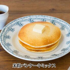 【送料無料】【ONE SPOON ENERGY】 米粉パンケーキミックス 100g×1袋【ネコポス配送】 鹿児島 洋菓子
