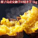 【冷凍】種子島産安納いもの焼き芋 1kg【送料無料】安納芋 鹿児島産 鹿児島県産 いも さつまいも サツマイモ やきいも 焼芋 焼きいも みろく アトスフーズ お歳暮