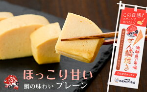 せん鯛焼き(こが焼き)プレーン1個 練り物 鹿児島 薩摩川内 漁協 カステラ 伊達巻 だて巻き 贈り物 お土産 銘品 プレゼント
