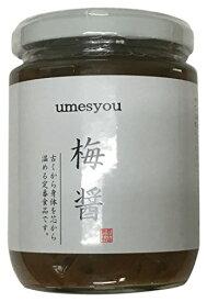 【レビュー記載で300円クーポン】「龍神梅」 梅醤(うめしょう) 250g