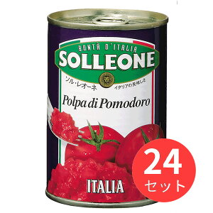 【24缶セット】ソル・レオーネ ダイストマト 400g 日欧商事【まとめ買い】