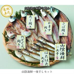 【山陰沖の新鮮な魚の干物詰合せ】送料無料 産地直送