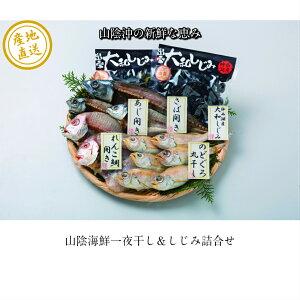 【山陰沖の新鮮な魚の干物・しじみ詰合せ】送料無料 産地直送