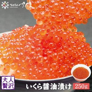 いくら醤油漬け イクラ 鱒いくら 250g【冷凍便】いくら丼