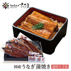 超特大うなぎ 蒲焼き 3尾セット 鰻 国産 ウナギ【冷凍便】