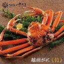 越前がに 越前蟹 通常30,000円コース【冷蔵便】ズワイガニ 漁解禁の11月7日以降の出荷となります。