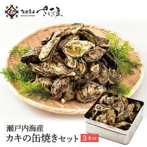 ガンガン焼き 海鮮 BBQセット バーベキューセット 牡蠣缶 3kg 30〜40個 かき カキ【冷凍便】