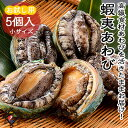 海鮮 BBQセット バーベキューセット 活き蝦夷あわび ミニサイズ 5個【冷蔵便】