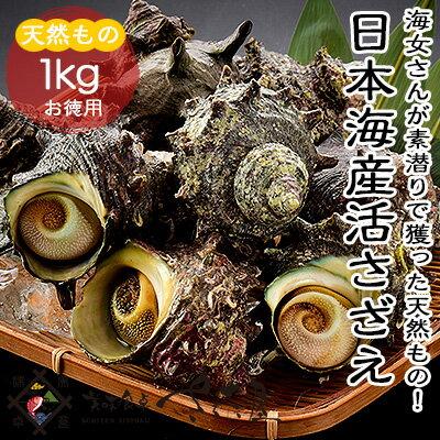 【冷蔵便】日本海産天然活さざえ1kg