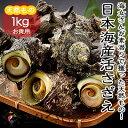 【冷蔵便】【BBQ】日本海産天然活さざえ1kg海鮮 バーベキュー バーベキューセット bbqセット冷凍商品・常温商品との同梱不可