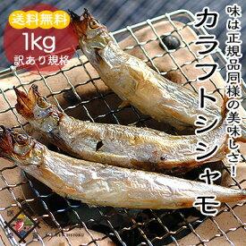 カラフトシシャモ 1kg【冷凍便】【訳あり】