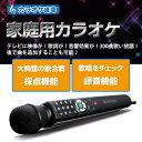 【あす楽_関東】【送料無料】カラオケ道場 DCT-300家庭用カラオケ