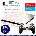 Ps4new 000180