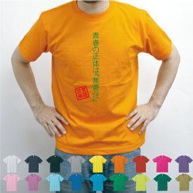 青春の正体は『無責任』/流言飛語【面白T】文字Tシャツ、半袖Tシャツ、アメカジ、アメリカンカジュアル、B系、ストリート、、半袖Tシャツ、春物、夏物、綿100、、メンズ、レディース、キッズ