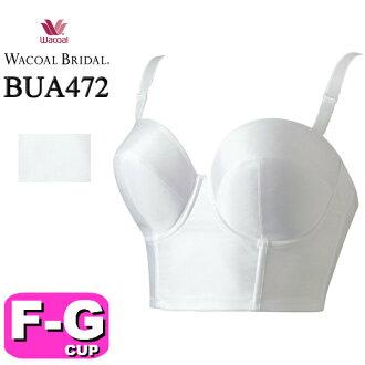 BUA472 midorifutaipu 1/2茶杯胸罩FG茶杯
