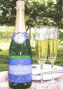 ★五一わいん★ナイヤガラスパークリングワイン 白  720ml五一ワインナイアガラスパークリングワイン