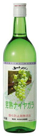 ★五一わいん★酸化防止剤無添加  完熟ナイヤガラ 白  720ml五一ワイン