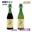 【2020年11月中旬発売 予約受付中】井筒無添加生ワイン【旧商品名 生にごりワイン】2020年新酒 720ml イヅツ 桔…