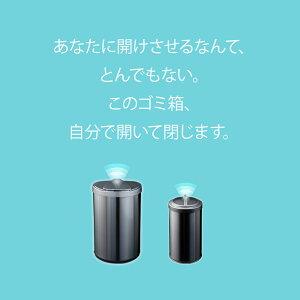 ゴミ箱ダストボックスおしゃれ横42×縦27×高さ66.5ふた付き横開き送料無料