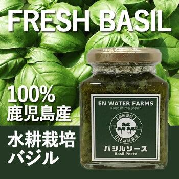 100%鹿児島県産バジルバジルソース(バジルペースト)瓶詰めジェノベーゼ水耕栽培フレッシュバジル安心の国内生産