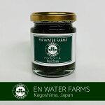 100%鹿児島県産バジルバジルソース(バジルペースト)180g瓶詰めジェノベーゼ水耕栽培フレッシュバジル安心の国内生産