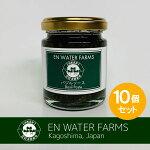 100%鹿児島県産バジルバジルソース10個セット(バジルペースト)180g瓶詰めジェノベーゼ水耕栽培フレッシュバジル安心の国内生産