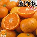 愛媛産 温州みかん 10kg 訳あり・不揃い【送料無料(一部地域除く)】愛媛県産 フルーツ 果物 美味しいみかん ご家庭用 …