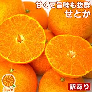 愛媛産 せとか 5kg 訳あり・不揃い・傷あり【送料無料(一部地域除く)】愛媛県産 家庭用 フルーツ 果物 くだもの 青果 産地直送 アウトレット みかん 蜜柑 せとかみかん 柑橘 かんきつ 冬の味