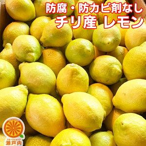 【買い回りに♪】チリ産レモン 1kg 訳あり【2品で+1kg(3kgセット) 3品で+2kg(5kgセット)】【送料無料(一部地域除く)】輸入レモン 檸檬 lemon 防腐剤不使用 家庭用 フルーツ 果物 くだもの 果実 みか