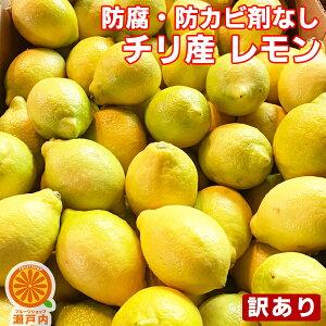 【買い回りに♪】防腐剤不使用 チリ産レモン 1kg 訳あり【2品で+1kg(3kgセット) 3品で+2kg(5kgセット)】【送料無料(一部地域除く)】輸入レモン 防カビ剤不使用 檸檬 lemon 家庭用 フルーツ 果物 く