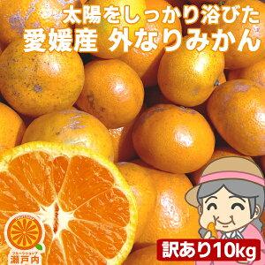 愛媛産 ご家庭用 農家さんもぐもぐ 外なり訳ありみかん 10kg(+約0.5kg多め)【送料無料(一部地域除く)】不揃い 傷 汚れ有 愛媛県産 フルーツ 美味しいみかん 果物 くだもの 温州みかん 柑橘類 か