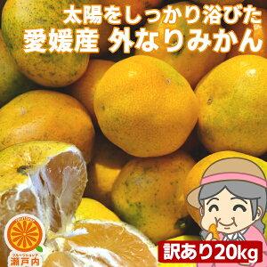 愛媛産 ご家庭用 農家さんもぐもぐ 外なり訳ありみかん 20kg(+約1kg多め)【送料無料(一部地域除く)】不揃い 傷 汚れ有 愛媛県産 フルーツ 美味しいみかん 果物 くだもの 温州みかん 柑橘類 か