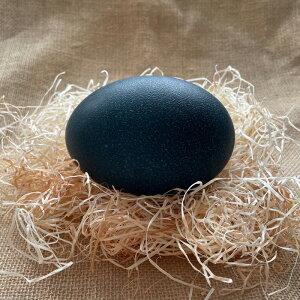 エミュー卵(生食用)1個の重さは約450〜550g(鶏卵の約10個分)卵の殻は深緑の鮮やかな色をしています。独特な弾力性を持ち黄身の割合が非常に多いのが特徴です。北海道網走市からの産地直