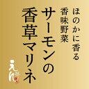 【1日限定20セット】サーモンの香草マリネ(3〜5人前)【RCP】  05P06jul13