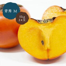 鳥取県八頭町産 こおげ花御所柿 5kg 箱入り 青秀 M 24玉 JA鳥取いなば