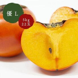 鳥取県八頭町産 こおげ花御所柿 5kg 箱入り 優 L 22玉 JA鳥取いなば